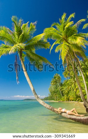 Exotic Hideaway In a Coconut Grove  - stock photo