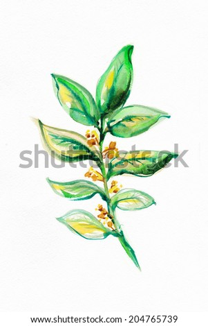 Exotic leaves ,written by water color paints. - stock photo