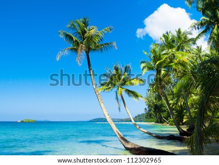 Exotic Paradise Idyllic Island - stock photo