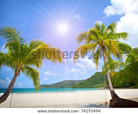 Exotic sunny beach with palm trees under blue sky near the sea. Paradise summer vacation. - stock photo