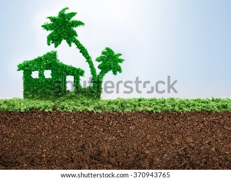 Exotic vacation planning with grass growing in shape of a palm tree - stock photo