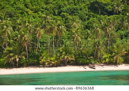 Exotic Wild Beach View from the Turquoise Sea - stock photo