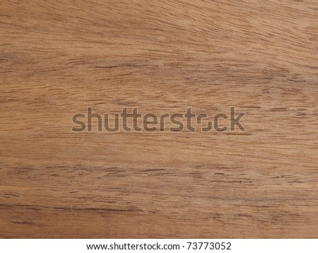 Exotic wood background - stock photo