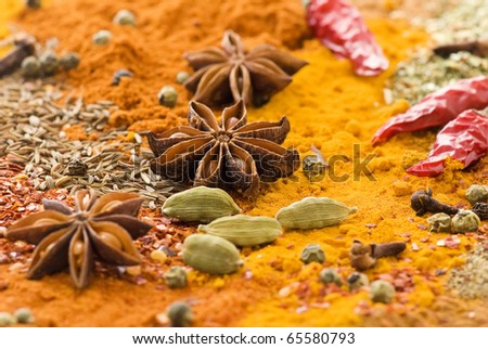 Exotically Spice Mix - stock photo