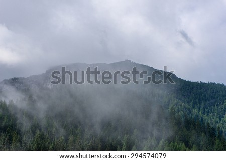 Expanse of fir trees beneath cloudy sky, view obscured by white mist - stock photo