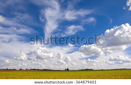 Expanse of Sky and Clouds over Fields of Harvest. Puffy Cumulus hover over a ripened pasture of corn and soybeans in Midwest Illinois, USA.  A farmhouse can be seen in the far distance. - stock photo