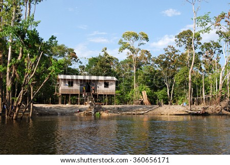 Expedition by canoe into the Amazon rainforest near Manaus, Brazil