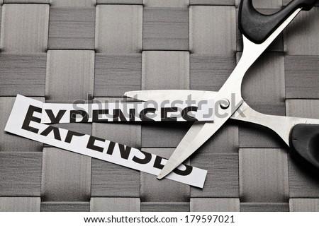 Expenses cut - stock photo