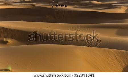 exploring the sahara desert in morocco - stock photo