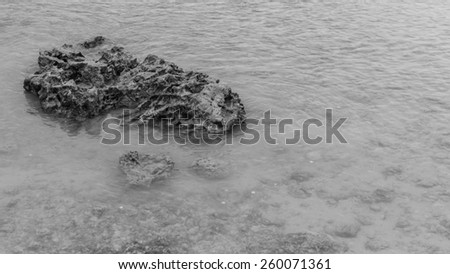 Exposed coral reef in Waikiki viewed at low tide. - stock photo