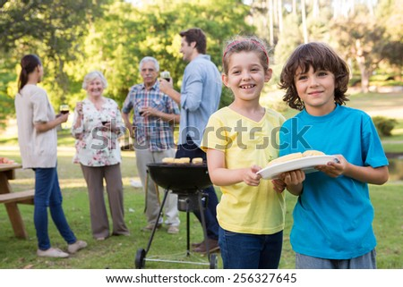 Extended family having a barbecue on a sunny day - stock photo