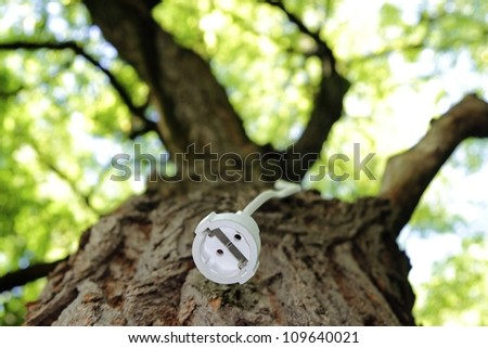 Extension cord on a tree for renewable Energy - stock photo