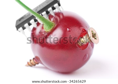 Extra close genetics modification process of a cherry berry - stock photo