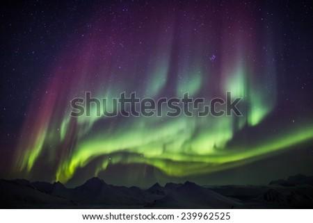 Extraordinary Northern Lights - Arctic sky - stock photo