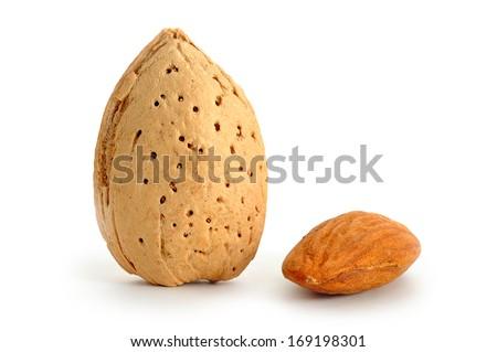 Extreme close-up image of almonds studio isolated on white background - stock photo