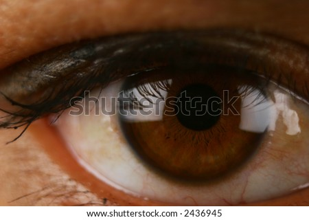 Extreme Close Up of human eye showing veins, pupils