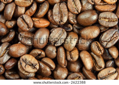 extreme close-up view of coffee beans