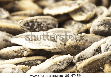 extreme closeup of a sunflower seeds stack