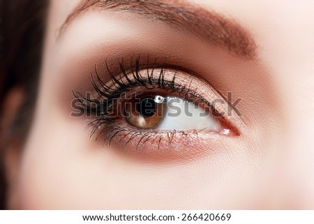 extreme closeup of beautiful womanish eye with glamorous makeup macro - stock photo