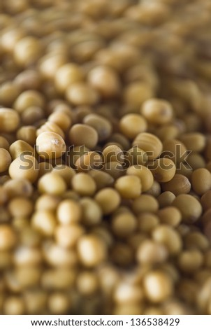 Extreme closeup of charlock or mustard spice grains - stock photo
