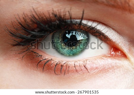 extreme closeup of green beautiful womanish eye with glamorous makeup macro - stock photo