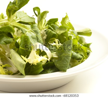extreme closeup of lettuce on a dish on white background - stock photo