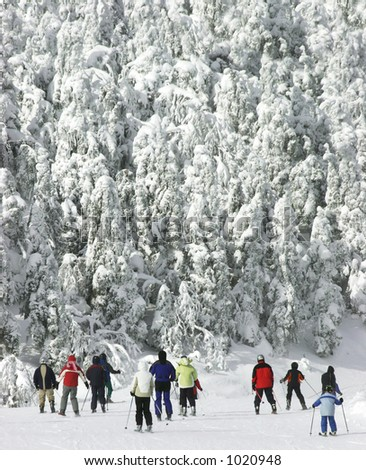Extreme Cold Downhill Skiing 2 - stock photo