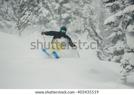 Extreme downhill skier skiing in the snow in the pine and spruce forest. Descent in Sheregesh, Russia - stock photo