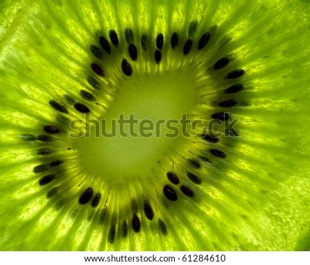 extreme macro kiwi - stock photo
