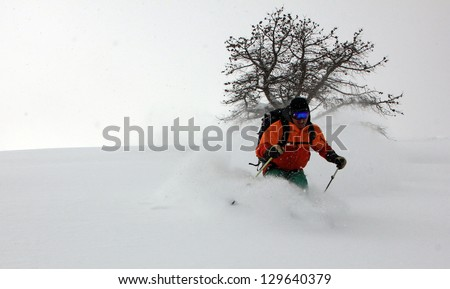 Extreme skier in powder snow with a dead pinion pine tree in the background, Utah, USA. - stock photo
