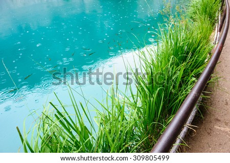 Extremely clear blue water of Plitvice Lakes, Croatia. Rainy day. - stock photo