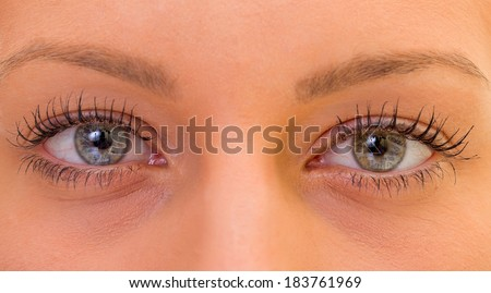 Extremely close up of a beautiful eyes - stock photo