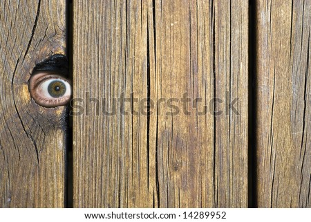 Eye behind wooden fence staring! - stock photo