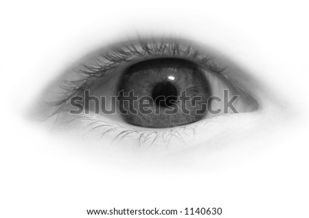 Eye close-up in black and white - stock photo