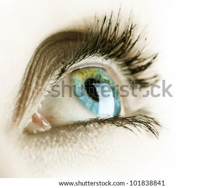 Eye isolated on a white background - stock photo