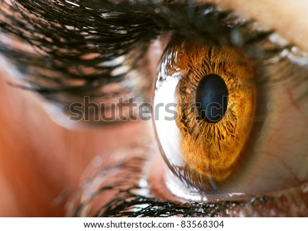 eye macro - stock photo