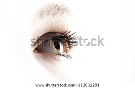 Eye over white - stock photo