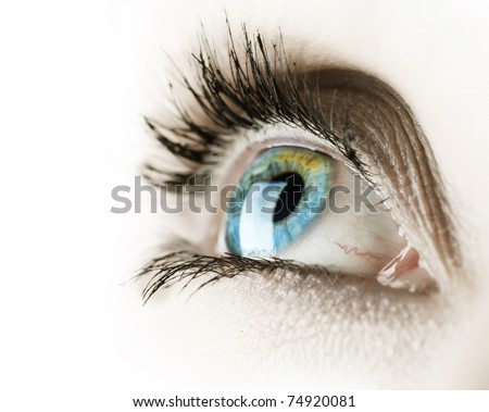 Eye over white - stock photo