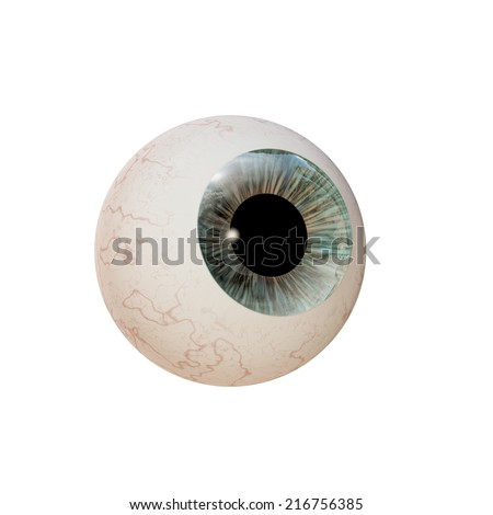 eyeball isolated on white background - stock photo