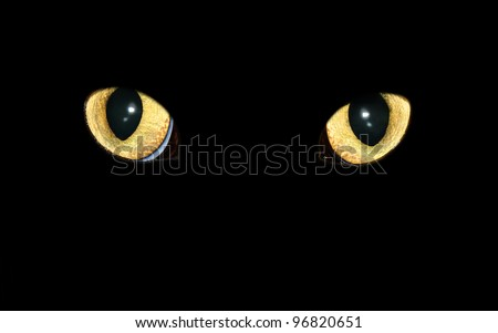 Eyes of a predator with an evil glow - stock photo