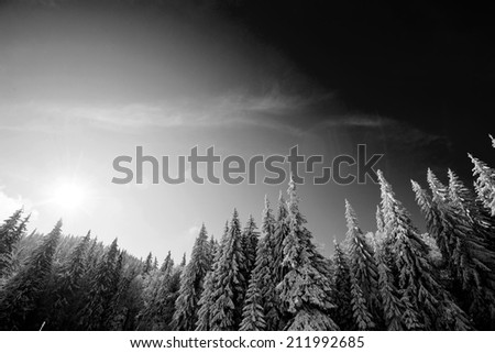 fabulous snow-capped mountains in black and white - stock photo