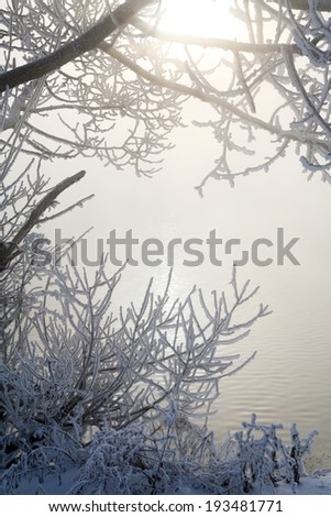 fabulous winter landscape fluffy frost on the trees and grass on the river bank in a light haze