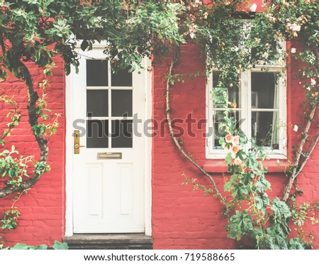 Facade of an old pink house with a vine grape.