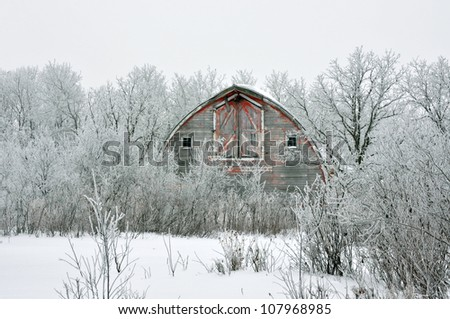 Faded red hip roof barn in the winter snow and hoarfrost