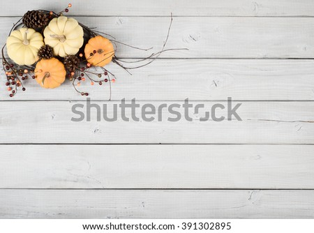 Faded Vintage Shabby Chic Still Life with Cream White and Orange Mini Pumpkins on Light Gray, Rustic board slats Background and room or space for copy, text, your words.  Horizontal aerial top view