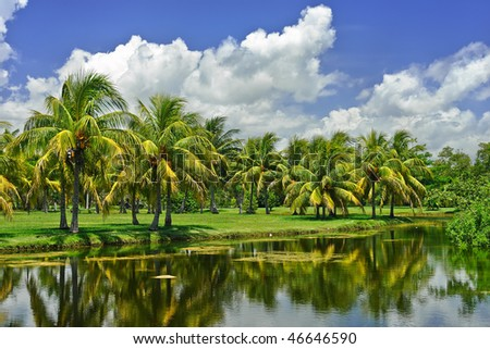 Fairchild tropical botanic garden, FL, USA - stock photo