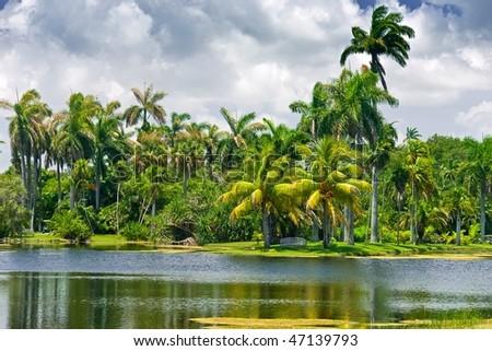Fairchild tropical botanic garden, FL, USA - stock photo