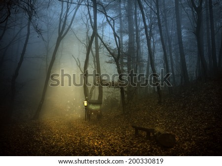 Fairies' forest with a lamp and road table - stock photo