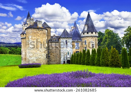 Fairy castles of France series, medieval castle with lavander fi - stock photo