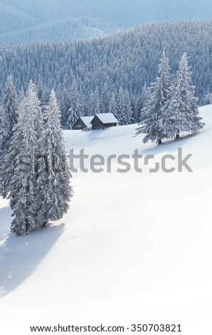 Fairy landscape. Winter in the mountains. Wooden houses. Carpathians, Ukraine, Europe - stock photo
